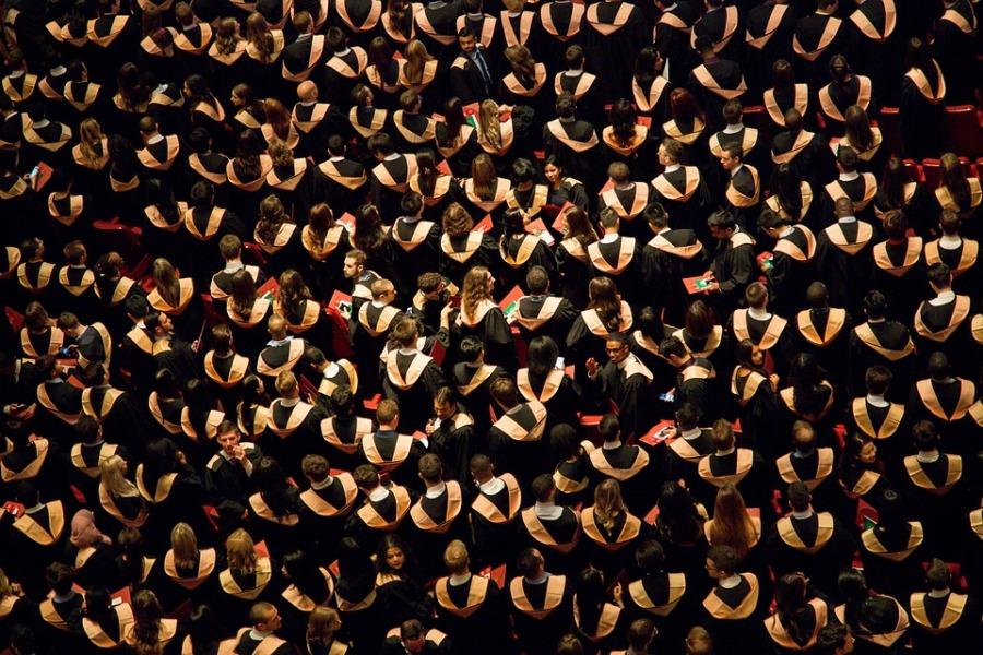 The Graduate Diaries: LaurenGosling