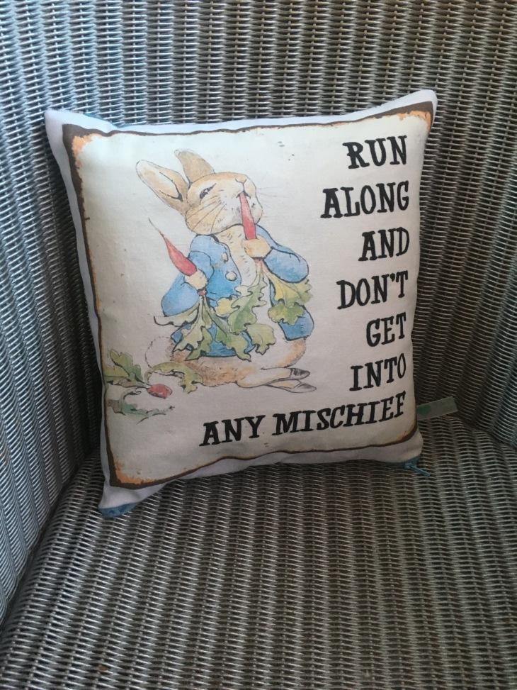 peter rabbit cushion 1