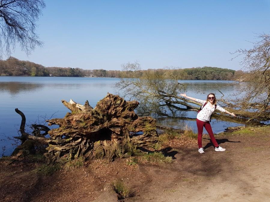 Culture Trip 29- Talkin Tarn CountryPark