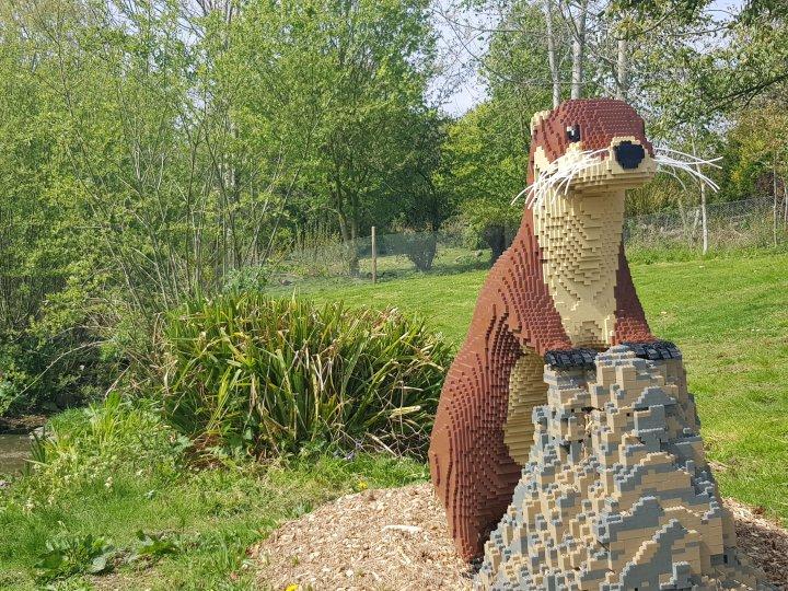 Culture Trip 31- Giant Lego Trail @ Washington WetlandCentre