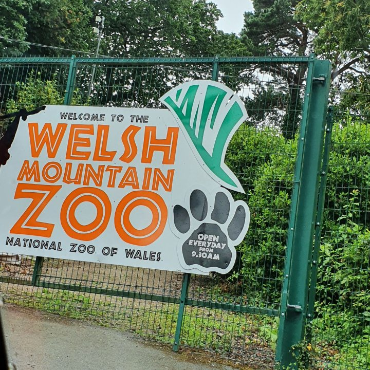 Culture Trip- The Welsh MountainZoo